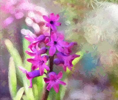 Hyacinth Art Print by Louise Lavallee