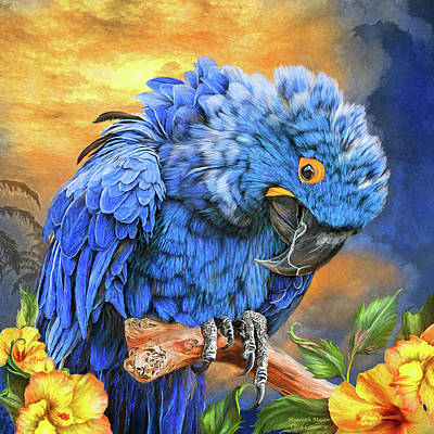 Macaw Mixed Media - Hyacinth Macaw by Carol Cavalaris