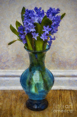 Photograph - Hyacinyth Heaven by Ian Mitchell