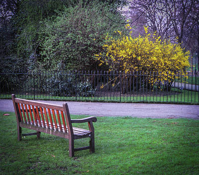 Hyde Park Bench - London Art Print