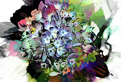 Photograph - Hydrangea Abstract by Kay Brewer
