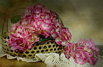 Photograph - Hydrangea Basket by Diana Angstadt