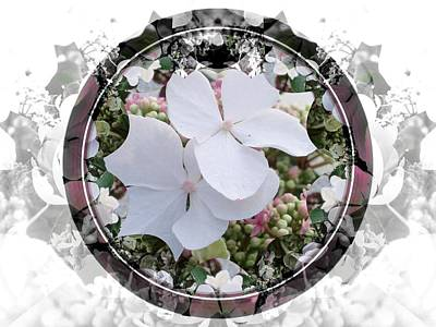 Mixed Media - Hydrangea Circle by Nancy Pauling
