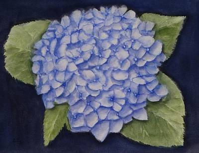 Painting - Hydrangea Flower With Blue Background by Kelly Mills