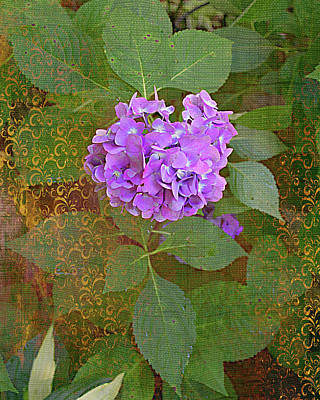 Photograph - Hydrangea Gilded by Larry Bishop