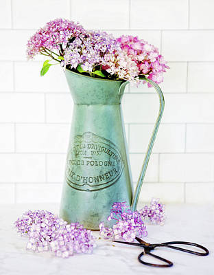 Photograph - Hydrangea In A Vase by Rebecca Cozart
