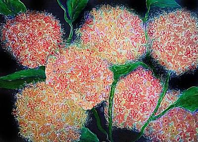 Photograph - Hydrangea Inspiration by Anne Sands