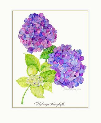Mauve Painting - Hydrangea by Kimberly McSparran