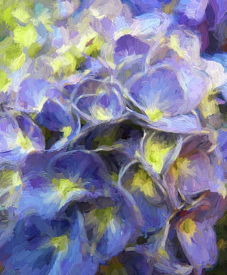 Photograph - Hydrangea Macro Painted by Sandi OReilly