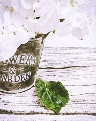 Photograph - Hydrangea by Steph Gabler
