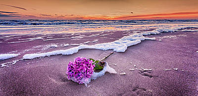 Hydrangea Washed Up On The Beach Part 2 Art Print by Alex Hiemstra