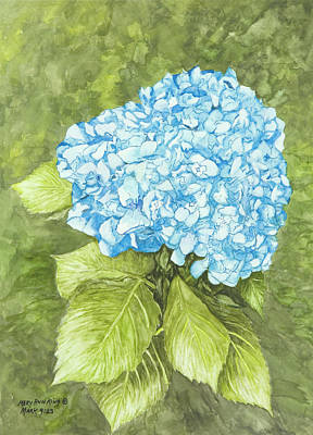 Painting - Hydrangeas 2 by Mary Ann King