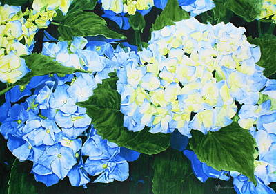 Painting - Hydrangeas by Frank Hamilton
