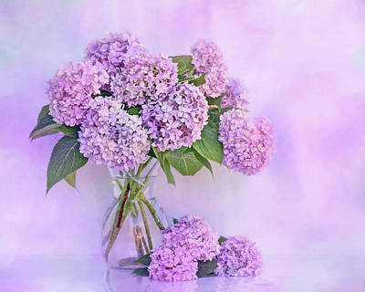 Photograph - Hydrangeas In Blue And Pink by Nikolyn McDonald