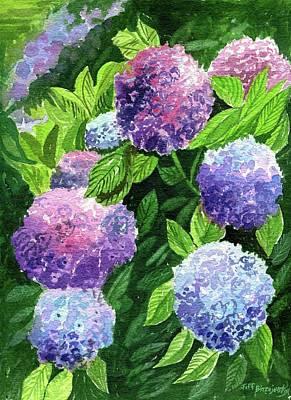 Painting - Hydrangea's by Jeff Blazejovsky