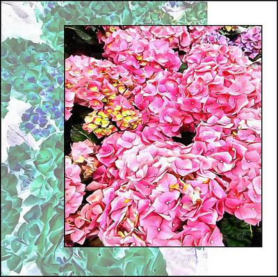 Digital Art - Hydrangeas Offset by Dorothy Berry-Lound