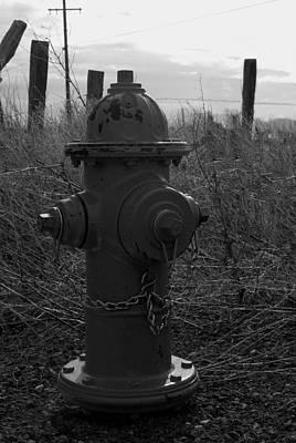 Photograph - Hydrant by Sara Stevenson