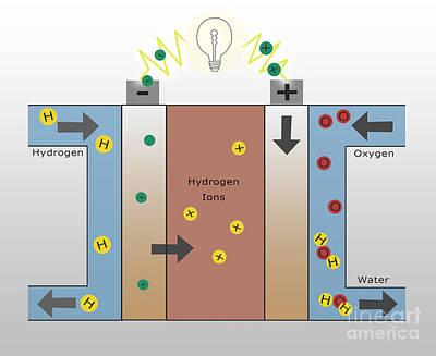 Hydrogen Fuel Cell Art Print