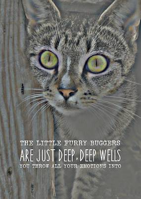 Hypnotize Quote Art Print by JAMART Photography
