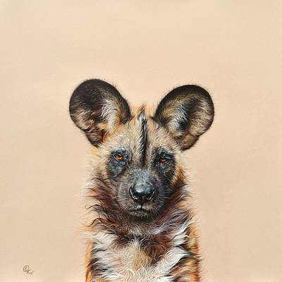 African Animals Drawing - I Am A Wild Thing - African Painted Dog by Elena Kolotusha