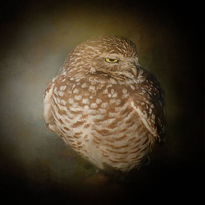 Photograph - I Am Not A Morning Person by Teresa Wilson