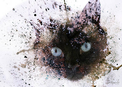 Photograph - I Am Siamese by Theresa Campbell