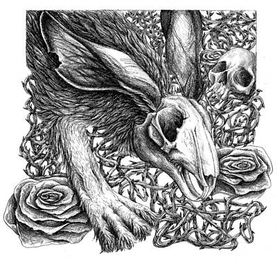 Human Skull Drawing - I Am The Rabbit by Danielle Trudeau