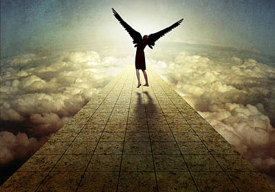 Montage Photograph - I Can Fly ... by Ben Goossens