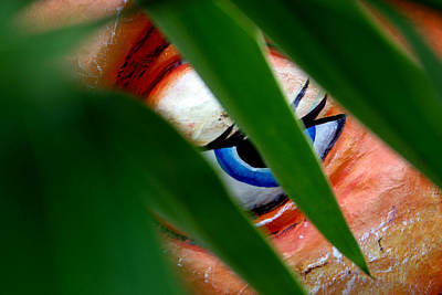 Photograph - I Can See You by Jez C Self