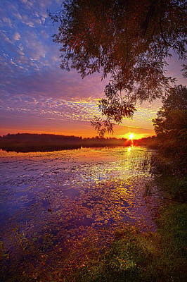Photograph - I Closed My Eyes And I Slipped Away by Phil Koch