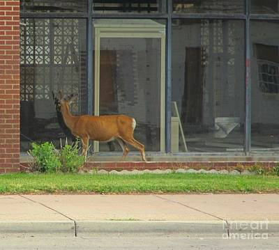 I Could Have Sworn I Saw Another Deer In There Print by John Malone