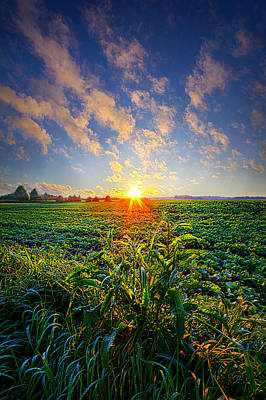 Hope Photograph - I Don't Live To Be by Phil Koch