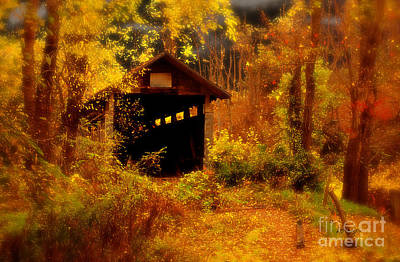 Autumn Landscape Digital Art - I Double Dog Dare Ya by Lois Bryan