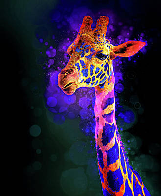 Photograph - I Dreamt A Giraffe by James Sage