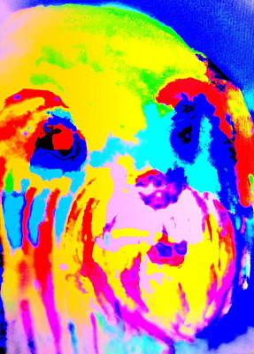 I Feel So Colorful Today  Original