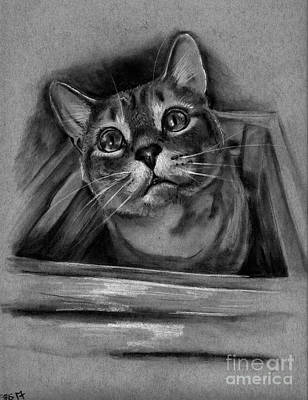 Drawing - I Fits I Sits by Samantha Strong