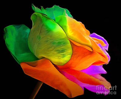Rainbow Rose Photograph - I Give You My Love by Krissy Katsimbras