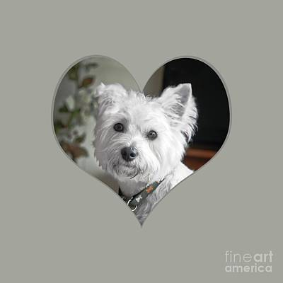 Photograph - I Heart Puppy On A Transparent Background by Terri Waters