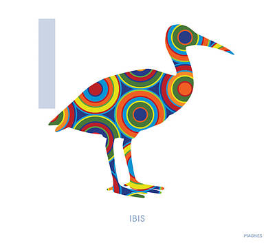 Ibis Digital Art - I Is For Ibis by Ron Magnes