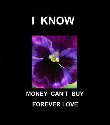 Digital Art - I Know Money Can't Buy Forever Love by VIVA Anderson