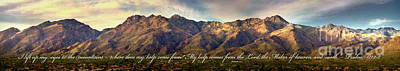 Photograph - I Lift My Eyes To The Mountains by Shevon Johnson