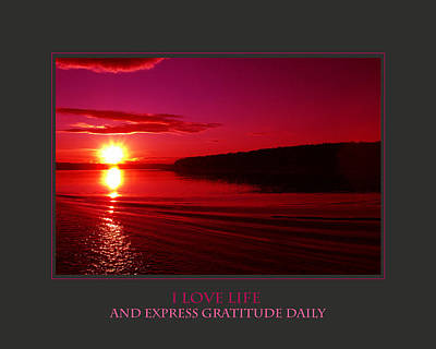 I Love Life And Express Gratitude Daily Print by Donna Corless