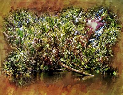 Photograph - I Love Palms by Sheri McLeroy