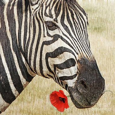 I Love Red Art Print by Barbara Dudzinska
