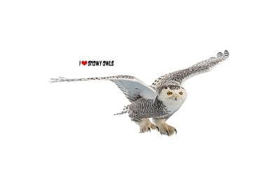 Snowy Owls Wall Art - Photograph - I Love Snowy Owls T-shirt by Everet Regal
