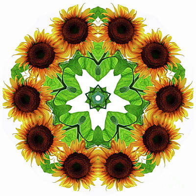 Photograph - I Love Sunflowers Kaleidoscope Wall Art by Carol F Austin