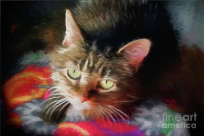 Digital Art - I Love This This Kitty 2017 by Andee Design