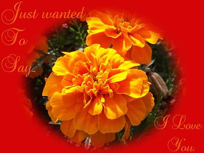 Garden Photograph - I Love You In Red And Orange by Dawn Hay