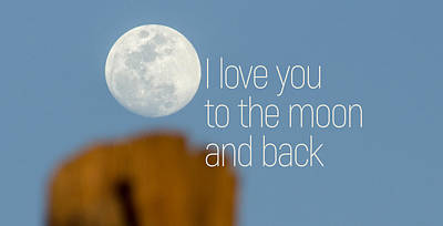 Photograph - I Love You To The Moon And Back by Andrea Anderegg