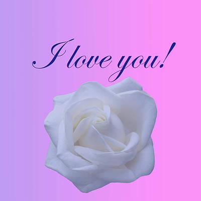 Digital Art - I Love You With A Rose by Johanna Hurmerinta